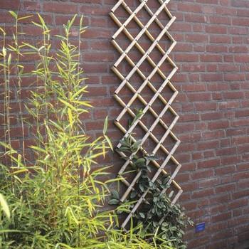 Afb. 7 Bamboe klimrek