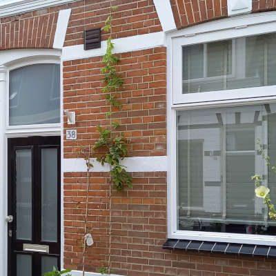 Blokstraat 38